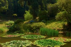 JardinsParqueMonserrate